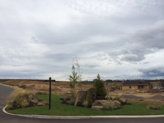 The new landscape with mounds from grade work in the background