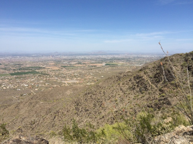 Near the high point of the Alta trail looking north toward Phoenix.