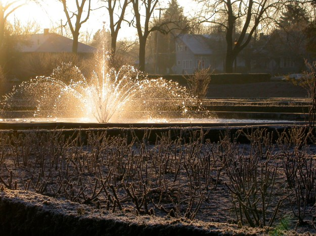 The fountain in the Peninsula Park Rose Garden, a frosty February morning