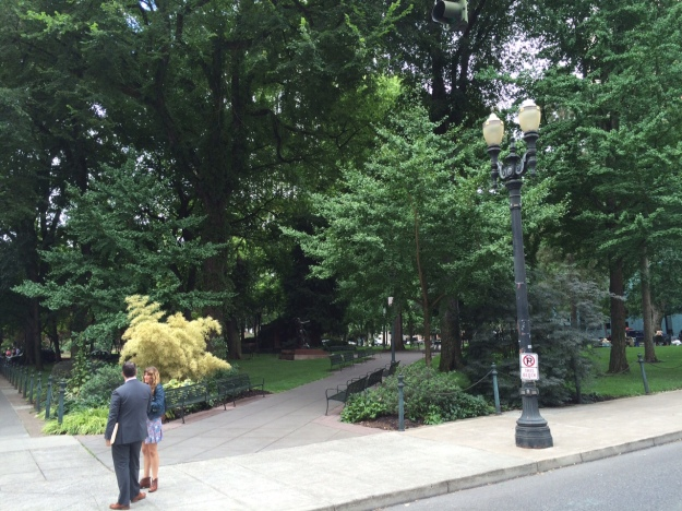 The wooded Chapman Square with two newer beds here at the NE corner.
