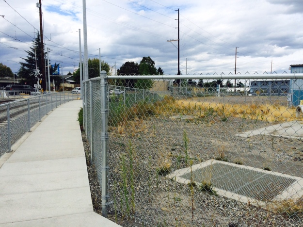 This fenced off service area along the curving tracks of the Orange Line is set up as another 'dead zone' that will have to be maintained clean. It currently contains mature Horseweed amongst others which can infect adjacent landscapes.