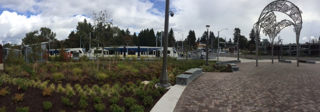 I included this picture for scale. Several of the beds here at the Park Ave terminus are each by themselves larger than the typical 5,000sq.ft. Portland lot.