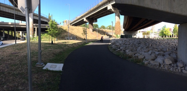 The Orange Line swings through space above on it way to its crossing with Naito Parkway with the bike path following below. Very little of this portion is 'landscaped'. It is left to its own 'devices'. The column on the right tells something of ODoT's commitment to its landscape. The support on the right holds one of the ramps on its way to the Marquam Bridge. The Ivy is cut sporadically.