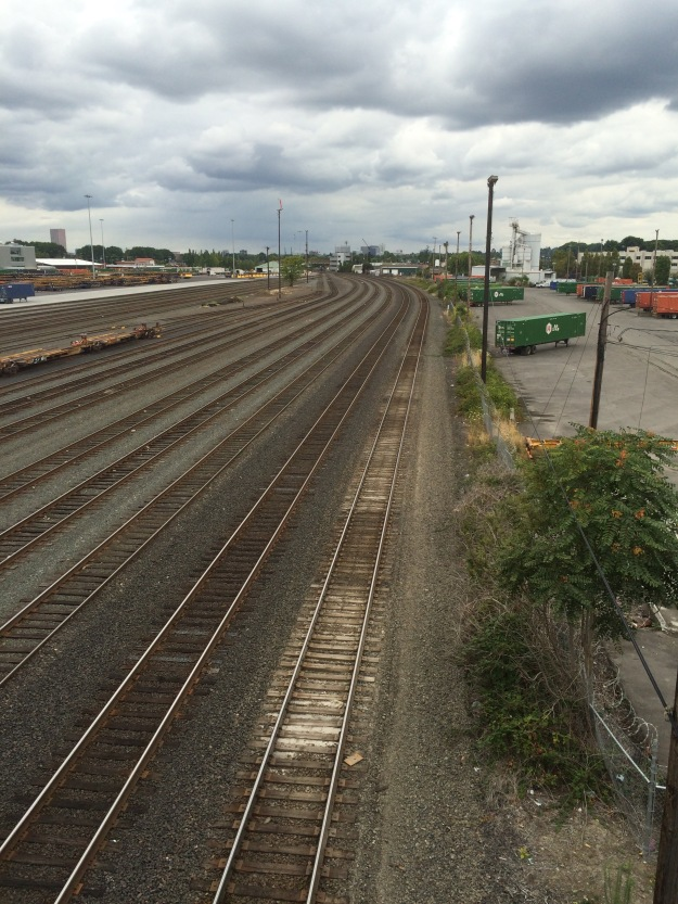 The Brooklyn switching yard. These areas must be kept clear. The fence line to the right, next to the container yard, is typical, here filled with common weeds, aggressive invasives and Tree of Heaven.