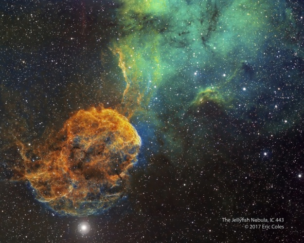 Sharpless 249 and the Jellyfish Nebula Image Credit & Copyright: Eric Coles