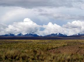The Bolivian Altiplano at about 4,250 m (14,000 feet). The snow-covered peaks of the Cordillera Real rise in the background. credit to Karan Gulaya, Wikipedia