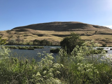The Deschutes drains a watershed that includes around 10,800 sq.mi., or approximately 11% of the state of Oregon's land area, much of it relatively arid, only slightly less than the Willamette River watershed in size, which flows at an average of 37,000 cu.ft./sec. (CFS), while the Deschutes manages an average of 5,824 CFS, a little more than 1/6 of the Willamette's volume.