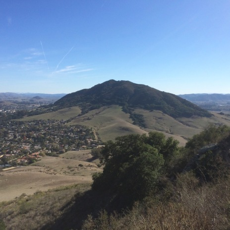Up on Bishop Peak, one in the chain of the volcanic Nine Sisters that form an arc out to Moro Bay in the Pacific, above San Luis Obispo in Oak country, looking toward Cerro San Luis sometime locally called Madonna Mountain. These are remnants, the plugs of former vents. As the more level land forms of California are largely dominated by agriculture and residential development it is hillsides and the more rugged terrain of mountains and ridges that offer ever decreasing bits of land in the valleys and coastal areas for the more threatened Oaks and Manzanitas many of which are under threat.
