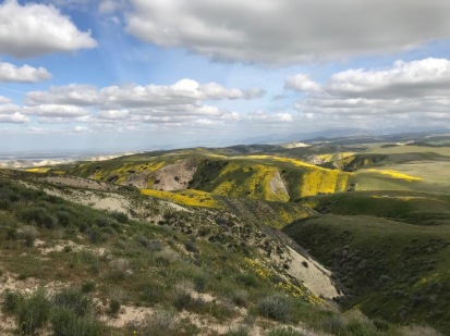 Looking south from the initial Elkhorn climb, Carrizo Plain