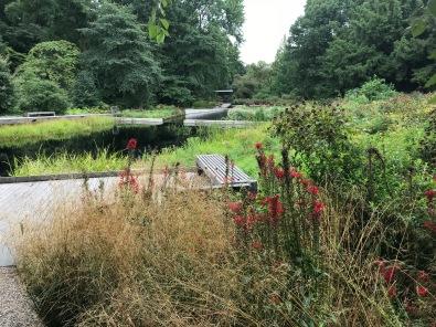 Experience: Gardens, Mentors, Peers and Friends…Essential