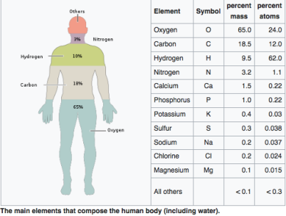 The main elements that compose the human body, by mass percent, are shown from most abundant to least abundant element. The atomic fractions (fractions of atoms) are different due to differing atomic weights. Water composes over 70% of the bodies bulk mass. Proteins fulfill multiple roles including essential structural and enzymatic functions, and are composed primarily of Carbon, Hydrogen, Oxygen and Nitrogen and, depending on the specific protein, tiny amounts of very few others. There are over 100,000 different proteins in the human body and none are interchangeable. Hydrogen is the most common atom and is the most common element in the universe. A single Oxygen atom has roughly 16 times the mass of a single Hydrogen.
