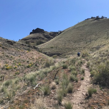 The trail up from the trailhead into the Spring Basin Wilderness Area, above the John Day River in North Central Oregon, east of Cascade Range.